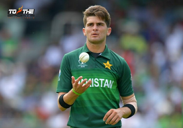 Shaheen Afridi keen to give 100 percent against Zimbabwe as well 2